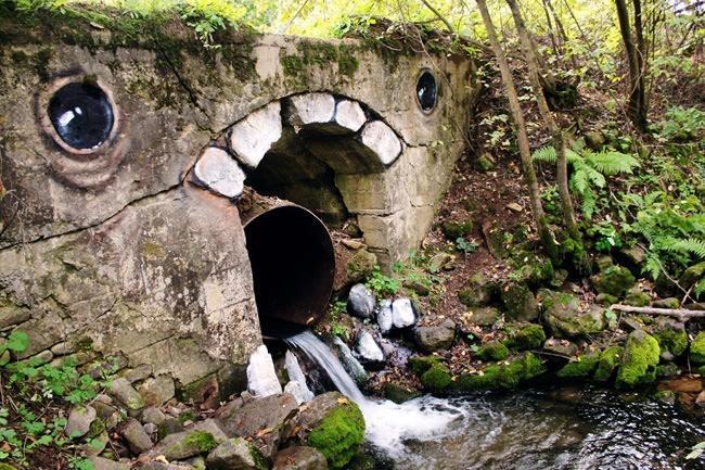 Los contaminantes hormonales llegan a las aguas a través de los desagües (Foto de 9post.com)