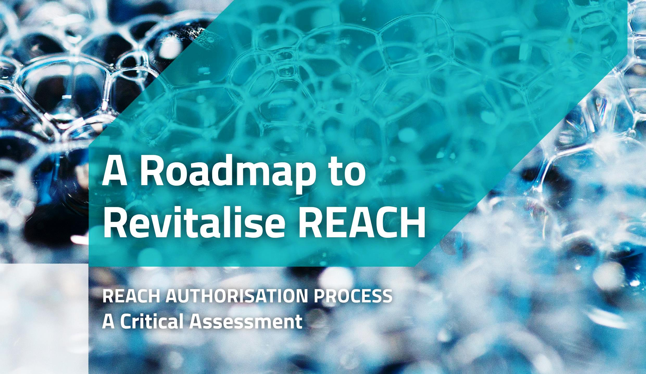 "Estudio ""A roadmap to revitalise REACH""."