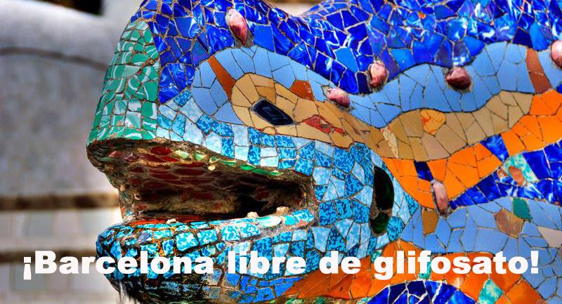Salamandra celebrando el fin del uso del glifosato en su parque ;-)
