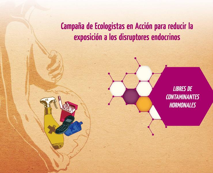 Exposición disruptores endocrinos