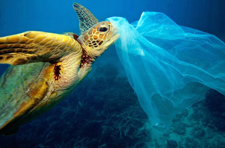 plástico playas